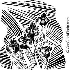 woodcurt, blume, iris
