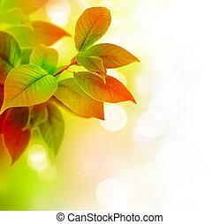 Wunderschöne Blätter