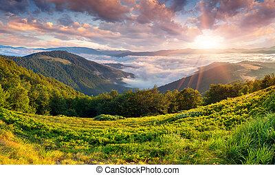 Wunderschöne Sommerlandschaft in den Bergen. Sonnenaufgang
