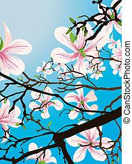 Wunderschöner Blumen Hintergrund