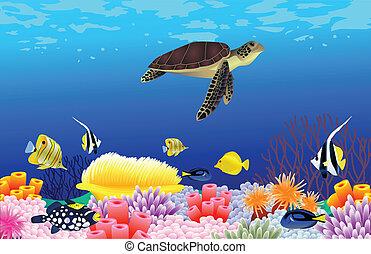 Wunderschöner Meeresgrund