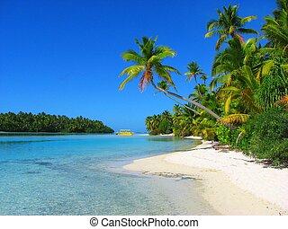 Wunderschöner Strand auf einer Insel, aitutaki, Kochinsel