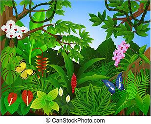 Wunderschöner tropischer Wald
