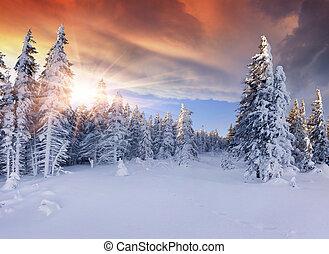 Wunderschöner Winter in den Bergen. Dramatischer roter Himmel