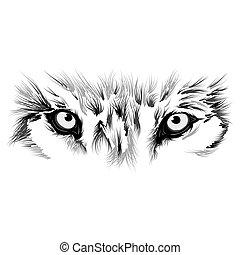 Wunderschönes Wolfsgesicht