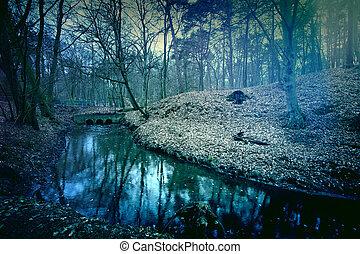 Zauber dunkler und mysteriöser Wald.