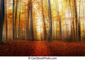Zauberstraße im Herbstwald.