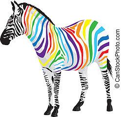 Zebra. Streifen unterschiedlicher Farben.