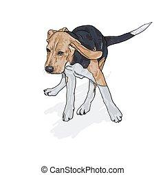 Zeichnen von laufendem Beagle mit Schatten auf Weiß.