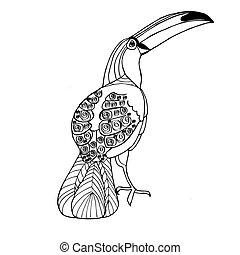 zeichnung, toucan., färbung, adults., vektor, buch, gezeichnet, hand, kinder