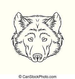 Zeichnung von Wolfskopf, Portrait von Waldtier schwarz und weiß Hand gezeichnet Vektor Illustration.