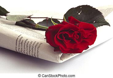 Zeitung und Rose