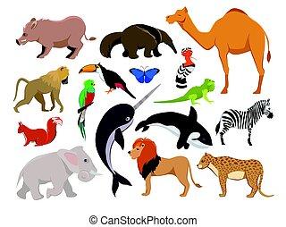 Zoo Wildtiere. Niedliche Vektorzeichen isolieren auf Weiß
