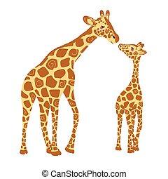 zwei, hintergrund., freigestellt, reizend, giraffe., baby- giraffe, erwachsener, giraffen, vektor, weißes