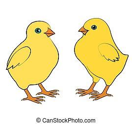 Zwei kleine Hühner.