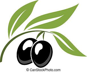 Zwei reife schwarze Zeichentrick-Oliven.
