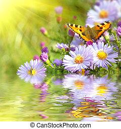 Zwei Schmetterlinge auf Blumen mit Spiegelung
