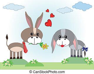 Zwei verliebte Esel