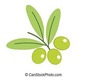 zweig, grüne oliven, icon.
