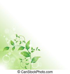 Zweig mit frischen grünen Blättern.
