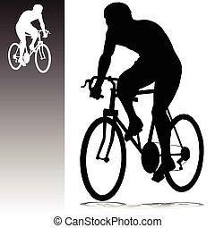 Zykling-Vektoren